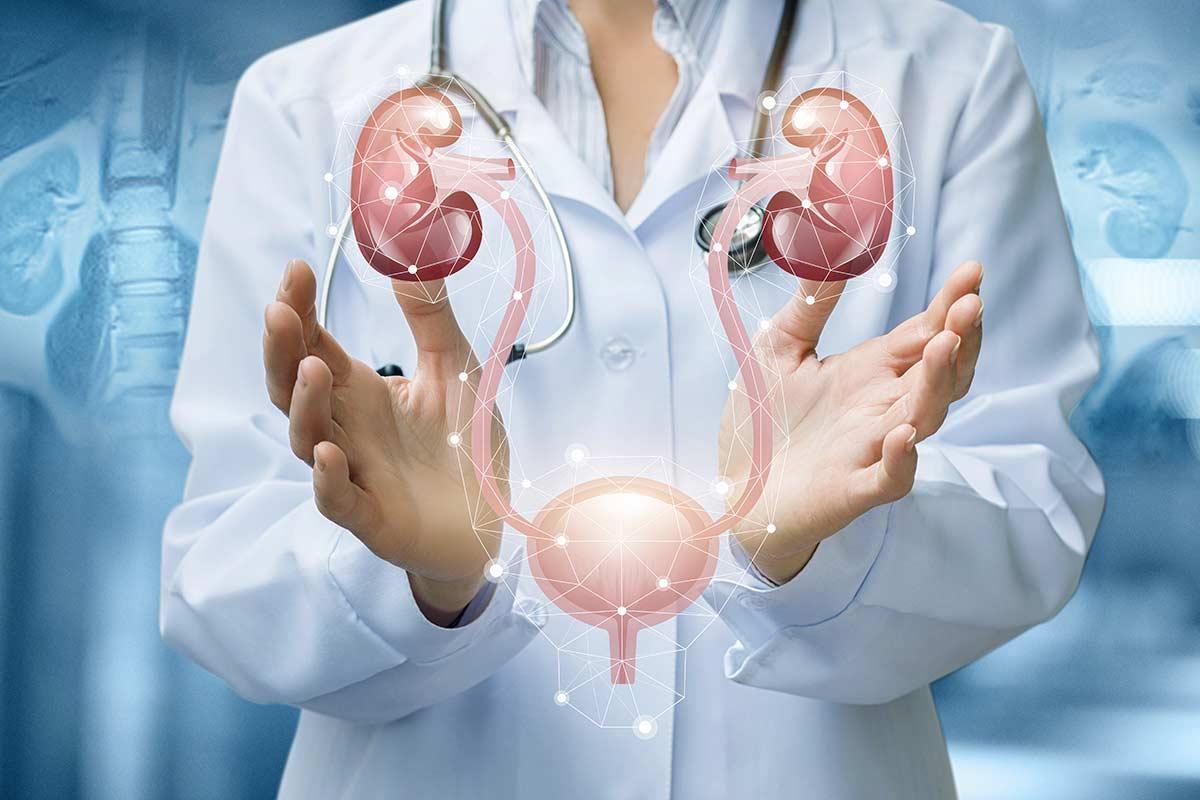 TCM Urologie - Dr. med. Sabine Habelt